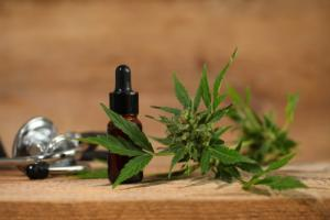 Antioxidant Effect Of Cannabidiol (CBD)